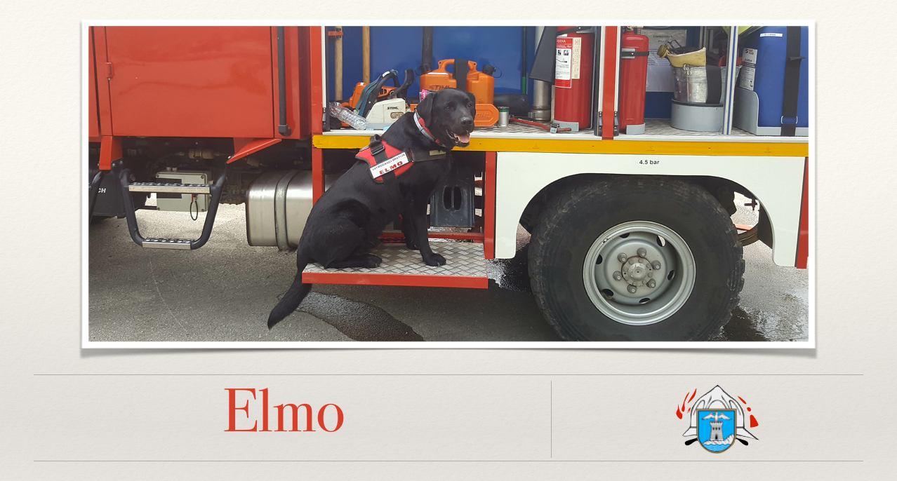 Opatijski vatrogasci oprostili se od svog Elma