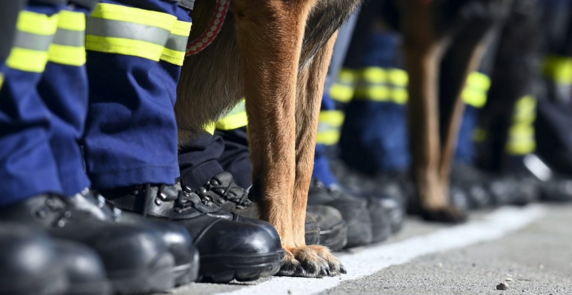 Šapjane postale Centar za obuku vatrogasnih K-9 timova
